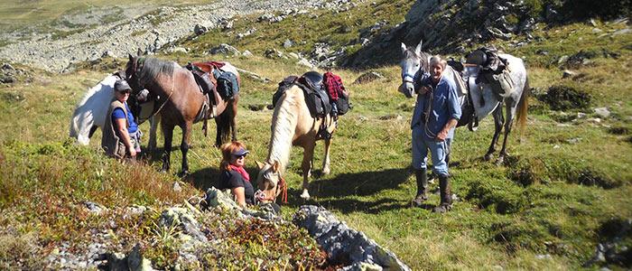 Cours d'équitation et services aux chevaux