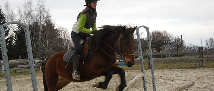 Cours d'équitation pour adultes à Saint-Sorlin-de-Morestel